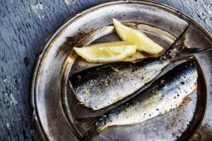 la choline et de la phosphatidylcholine dans les poissons gras